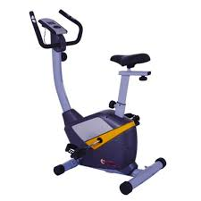 Buy Apollo Bike Machine AP-437B