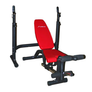 Apollo Bench Press Bench with Incline Decline AP-310