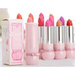 Pack of 10 Etude Lipsticks in pakistan